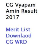 CG Vyapam Amin Result 2017 WRDA17 Merit List Download Online