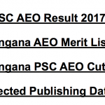 TSPSC AEO Result 2017 Cut Off Marks Expected Date Merit List
