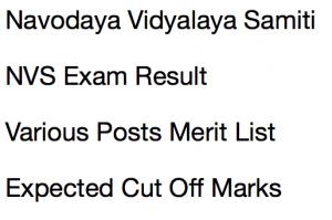 nvs result 2017 2018 navodaya vidyalaya samiti merit list expected cut off marks non teaching posts ldc lower division clerk storekeeper lab attendant staff nurse