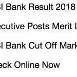 IDBI Executive Result 2018 Cut Off Marks Expected Merit List IDBI Bank
