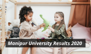 Manipur University Result 2020 1st 2nd 3rd Year Semester Result manipuruniv.ac.in Manipur University Latest Declared Examination Results 2019 - 2020 Download