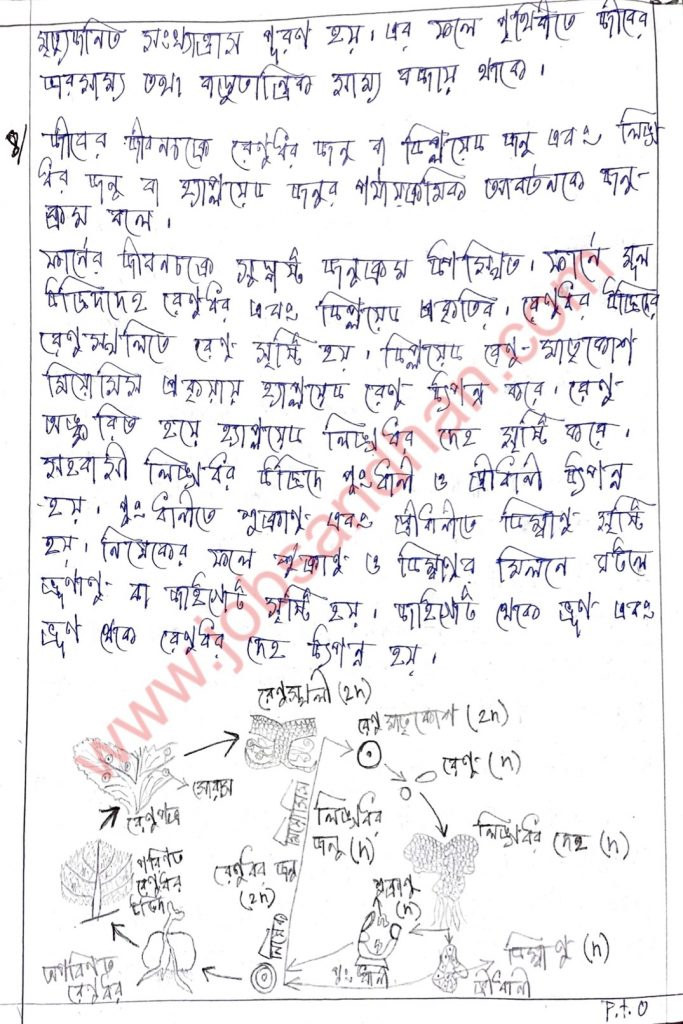 class 10 life science or jibon biggan er model activity task er uttor
